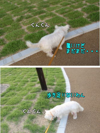image210807.jpg