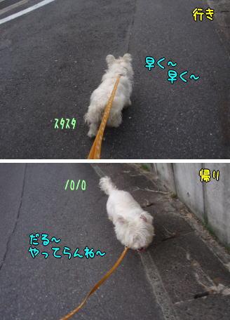 image210809.jpg