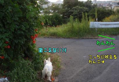 image210901.jpg