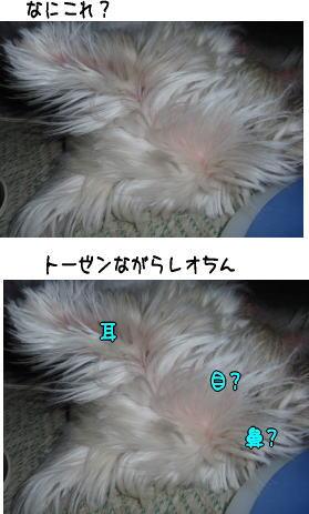 image210902.jpg