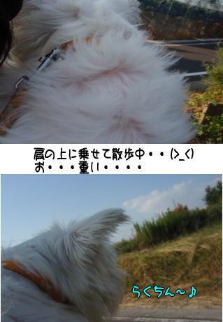 image210906.jpg