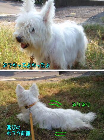 image210908.jpg