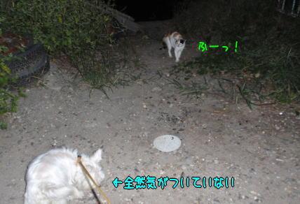 image210909.jpg