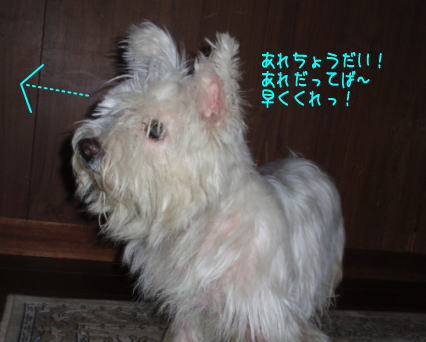 image210912.jpg
