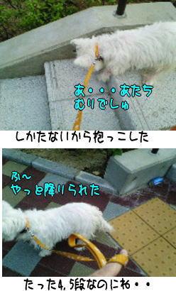 image210913.jpg