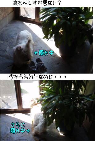 image210920.jpg