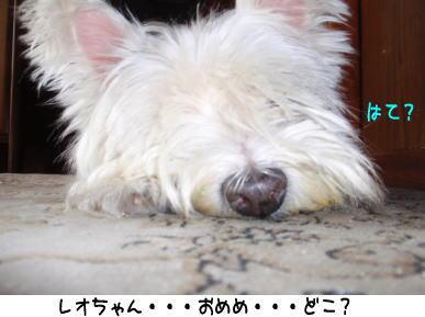 image210923.jpg