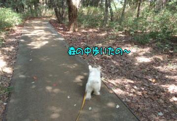 image210926.jpg