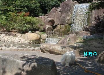 image210926a.jpg