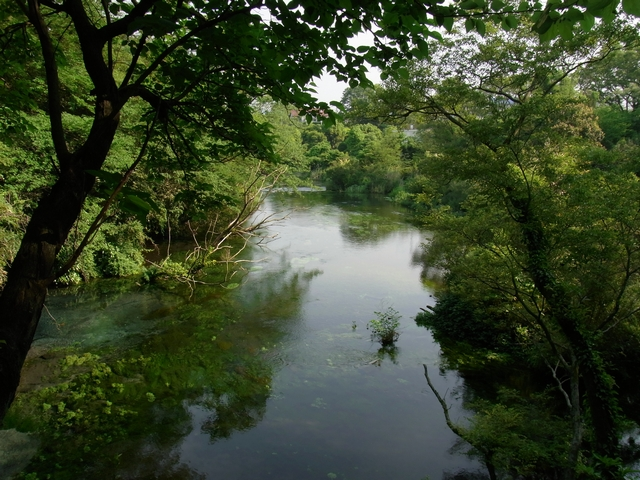 柿田川公園 - 第一展望台から