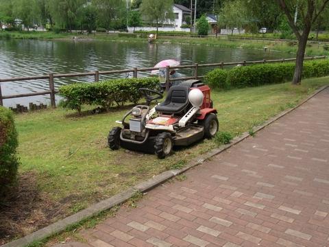 公園での除草