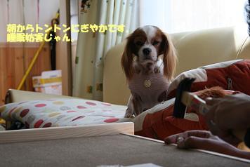2008/09/23 その1
