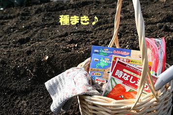 2009/03/20 その1