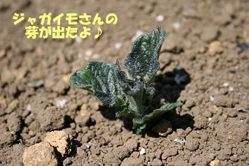 2009/04/10 その2