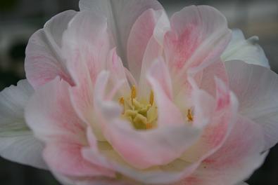 2009/04/15 その2