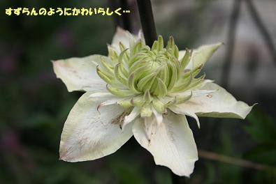 2009/05/27 その1