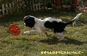 2008/12/04 その1