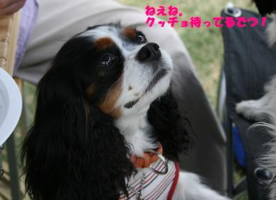 2009/05/04 その3