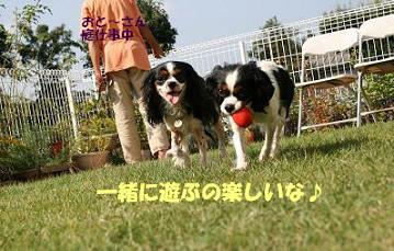 2008/10/18 その2