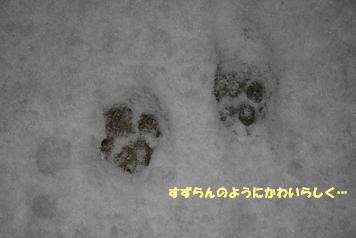 2009/03/04 その4