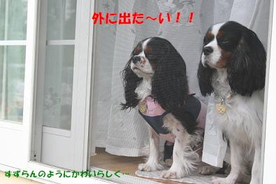 2009/06/10 その2