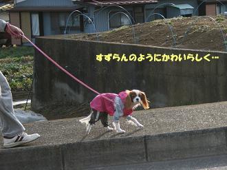 2009/02/19 その1