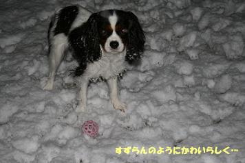 2009/03/04 その2