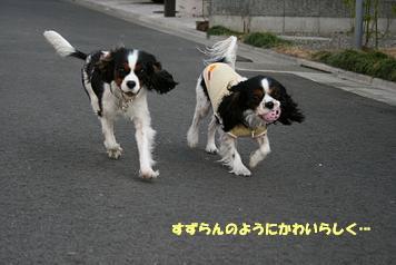 2009/02/12 その3
