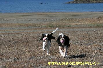2008/10/28 その4