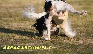 2009/02/08 その5