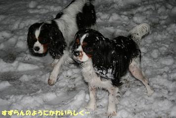 2009/03/04 その3