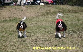2009/03/29 その3