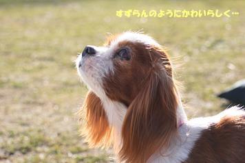 2009/02/01 その5