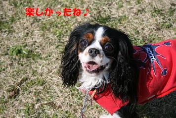 2009/03/29 その7