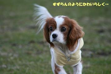 2009/01/03 その4