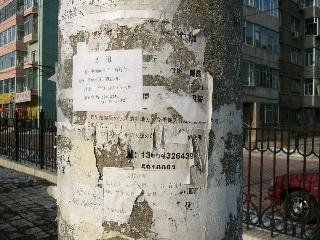 胡同の電柱:広告でいっぱい