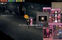 mabinogi_2008_10_12_001.jpg
