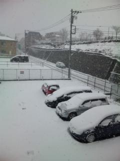 白いMy Car
