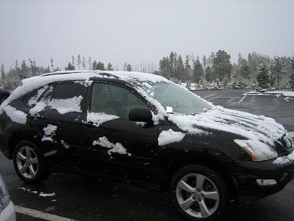 朝一はもっと雪がつもっていたんです・・・