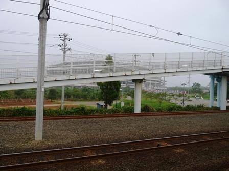 カシマ(1)