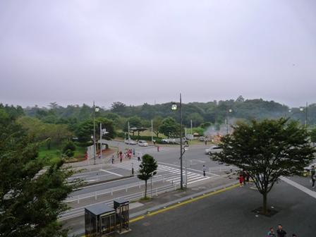 カシマ(9)