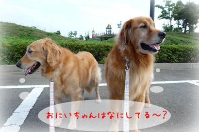 96お散歩6