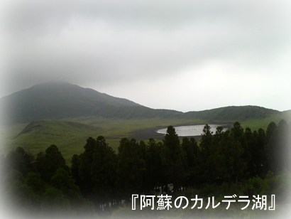 96お散歩8