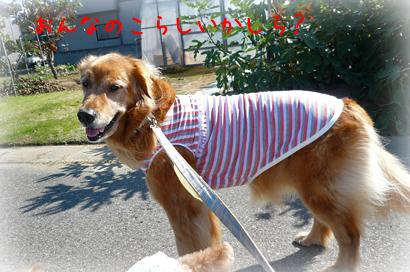 102お散歩3