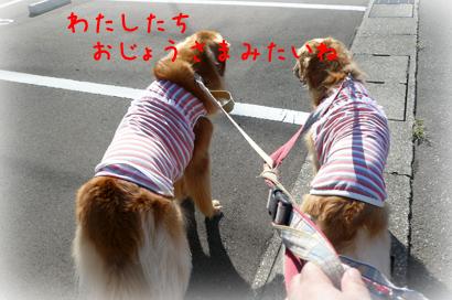 102お散歩6