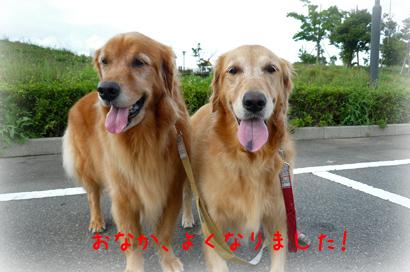 106お散歩7