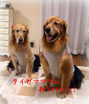 1011ファッションショー7