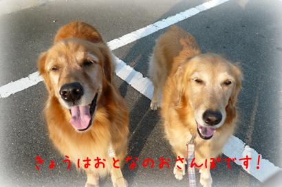 1021お散歩6