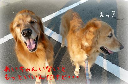 1021お散歩7