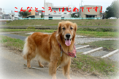 1022お散歩8